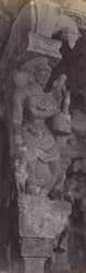 Madura. The Great Pagoda [Minakshi Sundareshvara Temple]. Carved pillar in the Thousand Pillar Portico [Airakkal Mandapa] 212212